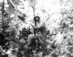 Men of Company K, 3rd Battalion, US 27th Infantry Division along the Zieta Trail, New Georgia, Solomon Islands, 12 Aug 1943