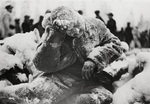 Frozen dead Russian soldier in Finland, 31 Jan 1940