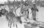 Finnish soldiers on skis with reindeers, near Jäniskoski, Finland, 20 Feb 1940
