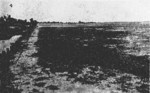 Photo taken at or near the planned Reigaryo Airfield site, Takao, Taiwan, 1933, photo 4 of 5