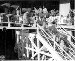 Japanese-American members of US 442nd Regimental Combat Team walking down the gangplank of Victory Ship USS Waterbury Victory, Honolulu, US Territory of Hawaii, 9 Aug 1946, photo 2 of 2