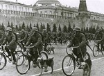 Soviet bicycle troops with war dogs on parade, Moscow, Russia, 1 May 1938