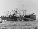 Haskell-class attack transport USS Sarasota in operation during the landings at Lingayen Gulf, Luzon, Philippine Islands, 8 Jan 1945