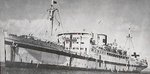 Japanese hospital ship Hikawa Maru, date unknown