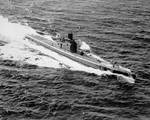 Shad off San Francisco Bay, 21 Mar 1944