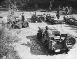 Five Willys MB vehicles in Italy, 1944