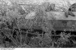 A camouflaged German SdKfz. 250/10 halftrack vehicle armed with a PaK 36 gun in southern Ukraine, 1943