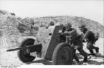 German troops with a 3.7 cm PaK 36 anti-tank gun on the northern French coast, early 1944