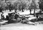 Anti-tank company of 1st Filipino Infantry Regiment in exercise with 37 mm Gun M3, 1943, photo 3 of 5