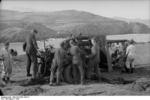 German Army 8.8 cm FlaK 36 gun being mounted onto its carriage, southern France, 1942, photo 2 of 3