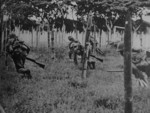 Japanese troops in exercise, date unknown