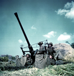 Canadian soldiers manning a 40-mm Bofors anti-aircraft gun in Normandy, France, Jun 1944