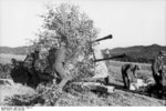 Camouflaged German 3.7 cm Flakzwilling 43 anti-aircraft mount, northern France, Jul-Sep 1943, photo 1 of 2