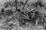 Partially camouflaged Chinese Type 24 machine gun position, date unknown, photo 1 of 2