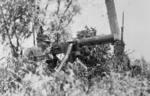 Partially camouflaged Chinese Type 24 machine gun position, date unknown, photo 2 of 2