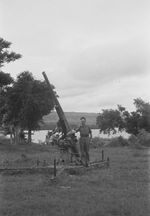 Dutch soldier with a captured Japanese Type 88 75mm anti-aircraft gun, Waingapu, Dutch East Indies, 25 Feb 1949